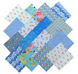 Notions Potions 40 Charm Pack Pre-Cut Square Blue Child Floral Dot 5×5″ Patch Work
